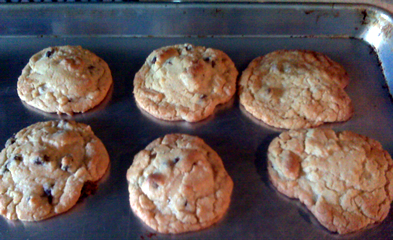 abbieschocolatechipcookies3